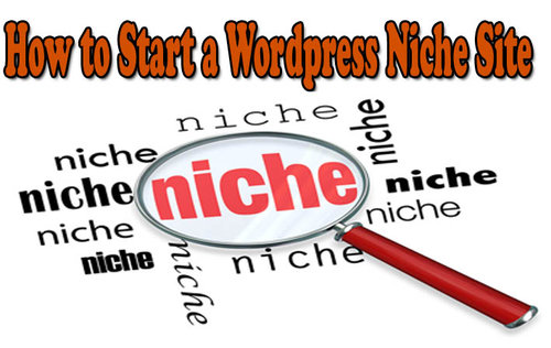 how to start a niche site